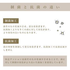 足枕 足まくら 脚枕 むくみ お疲れ足の休息クッション 日本製|kaiminclub|11