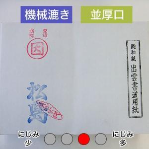 漢字用紙 練習用 半紙 『松島』 1000枚 書道用紙 書道半紙 書道用品|kaiseidou