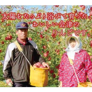 会津美里町産りんご サンふじ 3kg と会津産コシヒカリ2kg kaiseiya
