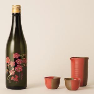 福島の日本酒と工芸品セット 有賀醸造 生粋左馬 純米大吟醸 720ml 二本松萬古焼酒器セット|kaiseiya