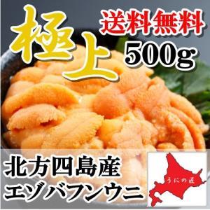 【送料無料】【極上】無添加 塩水生うに500g(エゾバフンウニ)(北方四島産)(北海道うに丼)