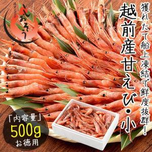 甘エビ 甘えび 子なし小サイズ 500g(約40〜50尾入り) 刺身用 越前産