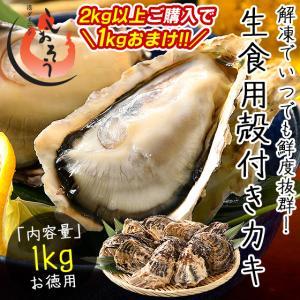 カキ 牡蠣 かき 生食用 殻付き 1kg(10個前後) 冷凍