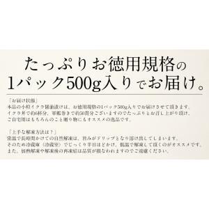いくら 鮭 イクラ 醤油漬け 500g 小粒 北海道加工 10/19以降出荷 kaisenichibashioso 11
