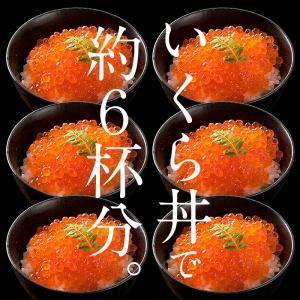 いくら 鮭 イクラ 醤油漬け 500g 小粒 北海道加工 10/19以降出荷 kaisenichibashioso 05