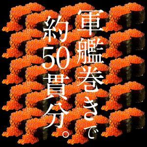 いくら 鮭 イクラ 醤油漬け 500g 小粒 北海道加工 10/19以降出荷 kaisenichibashioso 06