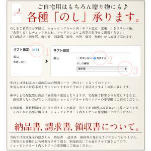 いくら 衝撃50%OFFセール! 鱒 イクラ 醤油漬け 500g 小粒 北海道加工|kaisenichibashioso|14