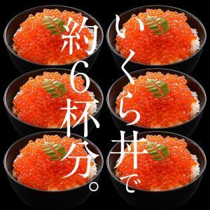 いくら 衝撃50%OFFセール! 鱒 イクラ 醤油漬け 500g 小粒 北海道加工|kaisenichibashioso|05