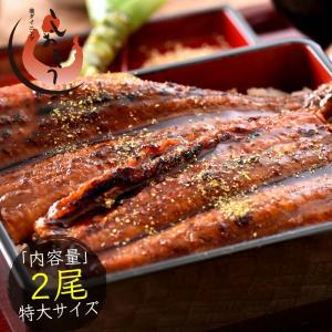 うなぎ 蒲焼き 国産 特大サイズ 200g×2尾 ウナギ 鰻...