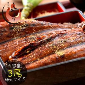 うなぎ 蒲焼き 国産 特大サイズ 200g×3尾 ウナギ 鰻...