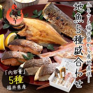 干物 漬け魚 福井の地魚 5種詰め合わせ 真鯛 鰆 サーモン 連子鯛 赤カレイ|港ダイニングしおそう