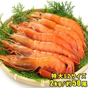 赤エビ 刺身 焼き 2kg 約50尾 アルゼンチン 赤えび 海老 天然 蝦 有頭 L2サイズ お取り...