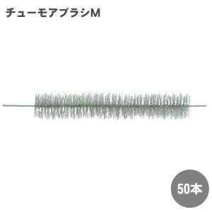 チューモアブラシM 50本|kaiteki-club