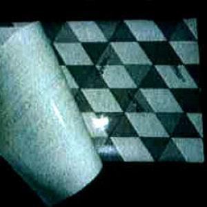 カシノナガキクイムシ調査シート かしながホイホイフリー 50枚 アース製薬 カシノナガキクイムシ対策! 【送料無料】|kaiteki-club