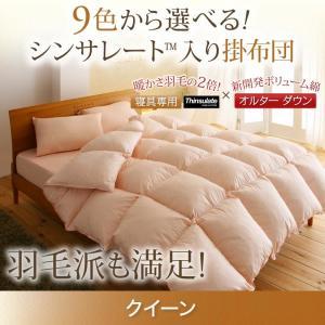 掛け布団 単品 クイーン / 暖かい 軽い シンサレート高機能中綿素材入り kaitekibituuhan