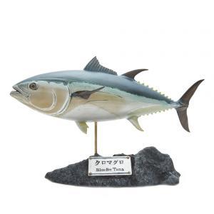 クロマグロ フィギュア(フィッシュカービング)※受注生産3ヵ月待ち(代引き不可) kaiyokobo