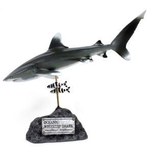 ヨゴレザメ フィギュア Oceanic whitetip shark(フィッシュカービング)※受注生産3ヵ月待ち(代引き不可) kaiyokobo