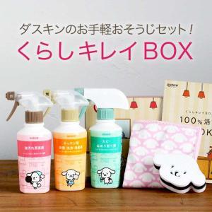 ダスキン くらしキレイBOX  スポンジ 洗剤 ツールのセット 掃除用洗剤セット ギフト キッチン用洗剤 ノベルティ 大掃除 数量限定|kajitano