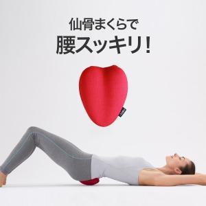 腰痛 骨盤矯正 仙骨 ほぐし 肩コリ 指圧代用器 マッサージクッション コシレッチ|kajitano