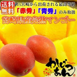 宮崎県産完熟マンゴー 2個入り  宮崎マンゴーの中で最高等級...