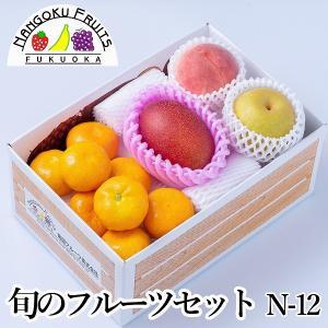 旬のフルーツセットN-12|kajitsumura