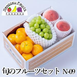 旬のフルーツセットN-09|kajitsumura