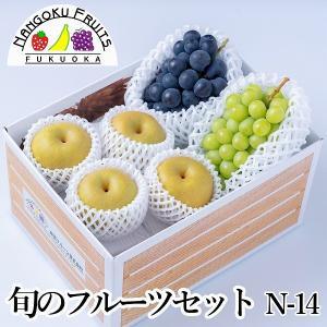 旬のフルーツセットN-14|kajitsumura
