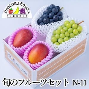 旬のフルーツセットN-11|kajitsumura