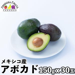 メキシコ産アボカド30玉 (150g x 30玉)|kajitsumura