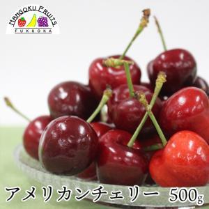 アメリカンチェリー500g|kajitsumura