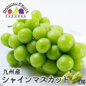 九州産葡萄・シャインマスカット2房 kajitsumura