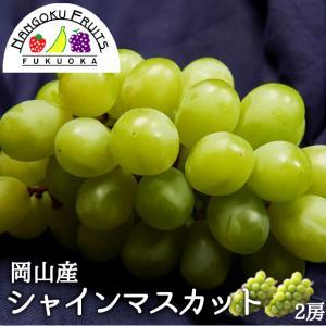 岡山産葡萄・シャインマスカット2房 kajitsumura