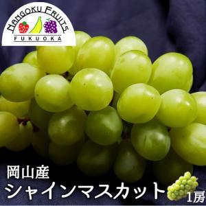 岡山産葡萄・シャインマスカット1房 kajitsumura