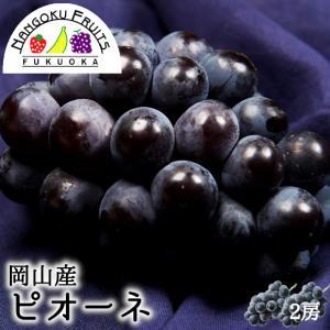 岡山産ピオーネ2房 kajitsumura