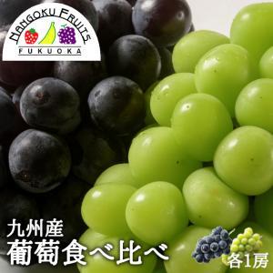 九州産彩り葡萄食べ比べ 各1房 kajitsumura