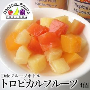 ドールフルーツボトル・トロピカルフルーツ4個|kajitsumura