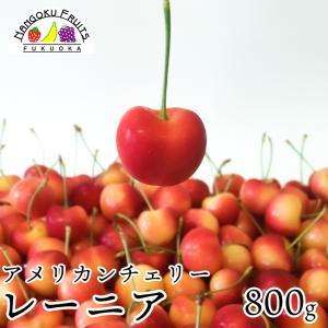 最高級アメリカンチェリー・レーニア800g箱|kajitsumura