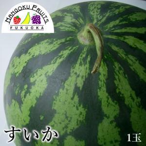 九州産西瓜1玉|kajitsumura