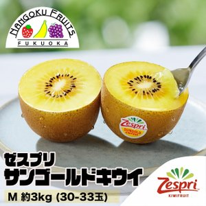 ニュージーランド産ゼスプリ・サンゴールドキウイ M約3kg(30-33玉)|kajitsumura