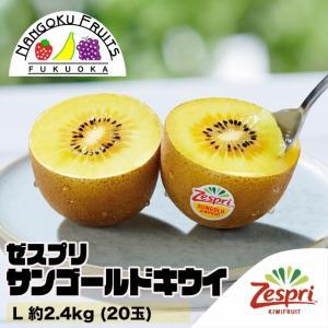 ニュージーランド産ゼスプリ・サンゴールドキウイ L約2.4kg(20玉)|kajitsumura