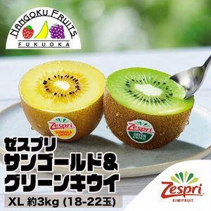 ニュージーランド産 ゼスプリ サンゴールド&グリーンキウイ XL約3kg (18-22玉)|kajitsumura
