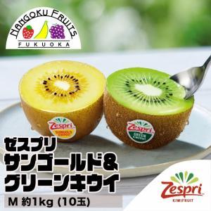 ニュージーランド産ゼスプリ サンゴールド&グリーンキウイ M約1kg (10玉)|kajitsumura