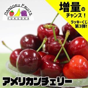 【増量のチャンス!】アメリカ産アメリカンチェリー 大粒1kg|kajitsumura