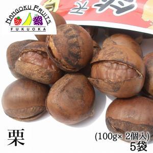 天津甘栗・笑笑栗5袋(100gx2) kajitsumura