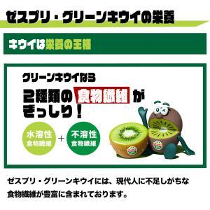 ニュージーランド産ゼスプリ・グリーンキウイ大22玉|kajitsumura|03