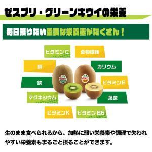 ニュージーランド産ゼスプリ・グリーンキウイ大22玉|kajitsumura|05