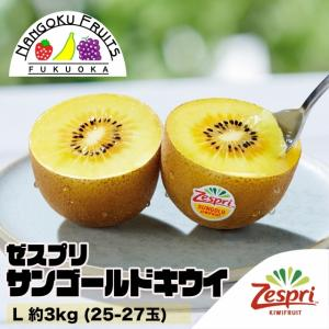 ニュージーランド産ゼスプリ・ゴールドキウイ中玉3kg(25-27玉)
