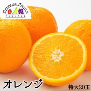 オレンジ20玉(1玉300g)