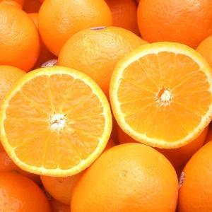 *ミラクルフルーツ&オレンジ