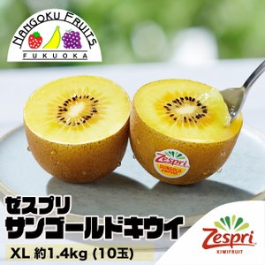 ニュージーランド産ゼスプリ・サンゴールドキウイ XL約1.4kg (10玉)|kajitsumura